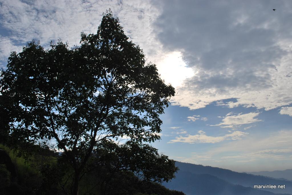 broga_hills